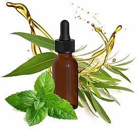 AROMATERÁPIA Aromaterápiás olaj - TEAFA